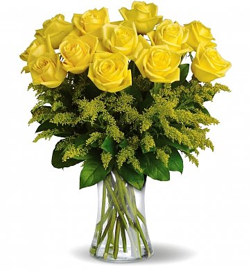 Roses: One Dozen Premium Yellow Roses