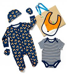 Baby Gift Baskets: Woodland Fox Baby Outfit